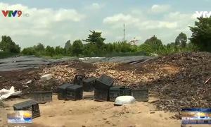 Cần Thơ: Doanh nghiệp ủ phân vi sinh gây ô nhiễm môi trường
