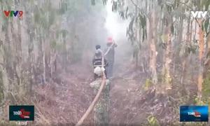 Kiên Giang: Nỗ lực chữa cháy cứu rừng