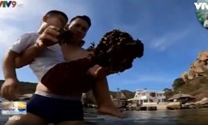 Phá san hô Vườn Quốc gia Núi Chúa để quay phim, chụp ảnh