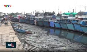 Khánh Hòa: Đầu tư cảng biển theo hướng chuyên biệt