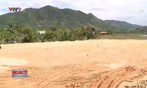 Hơn 10 hộ dân không thể vào vùng trồng lúa vì bị bít lối đi .