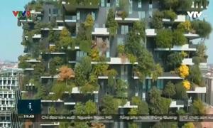 Vườn thẳng đứng-xu hướng xây dựng xanh.