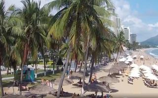 Những rặng dừa giữ nét duyên cho đô thị biển Nha Trang
