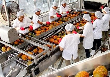 Enhancing Vietnamese agro-products to take advantage of EVFTA
