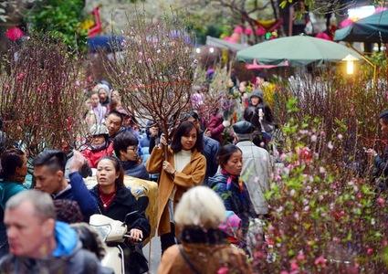 Hanoi to open 51 spring flower markets ahead of Tet