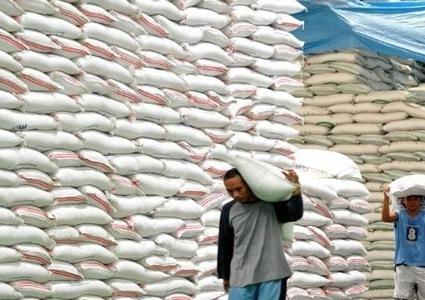 Senegal a potential market for Vietnamese rice