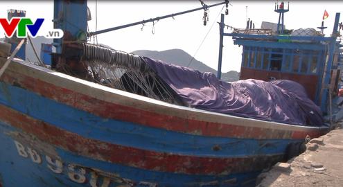Bình Định: Cứu hộ thành công 6 ngư dân gặp nạn trên biển