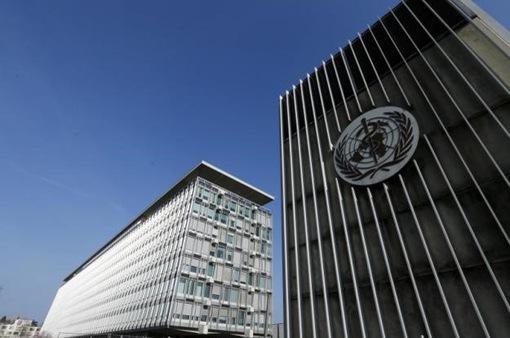 WHO thừa nhận sai sót trong đánh giá rủi ro toàn cầu về dịch viêm phổi cấp