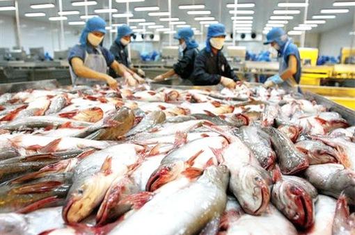 Thị trường có lợi cho xuất khẩu cá tra Việt Nam
