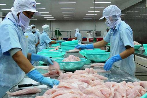 VASEP kiến nghị gỡ khó cho xuất khẩu thủy sản Việt Nam