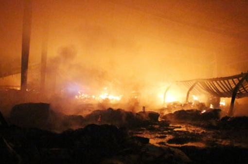 Cháy lớn tại công ty gỗ ở Bình Dương gây thiệt hại hàng tỷ đồng
