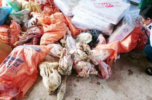 Hà Tĩnh: Phát hiện gần 1,2 tấn thực phẩm quá hạn