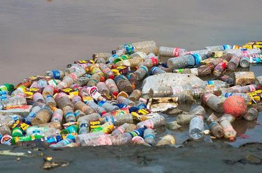 Năm 2050, rác thải nhựa ở đại dương nhiều hơn cá