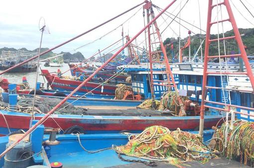 Các tỉnh Bắc miền Trung khẩn trương ứng phó với bão số 4