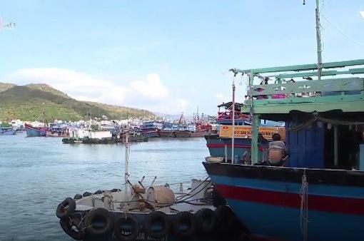 Quyết liệt ngăn chặn khai thác hải sản trái phép