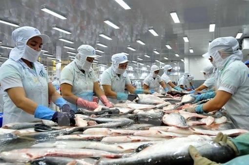 Nỗ lực cải thiện hình ảnh cá tra tại châu Âu