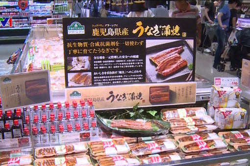 Cá tra Việt Nam giả vị lươn hấp dẫn người dùng Nhật Bản