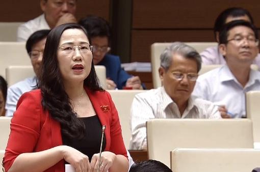 Đại biểu Quốc hội tranh luận về quy định xử lý hình sự với trẻ 14-16 tuổi