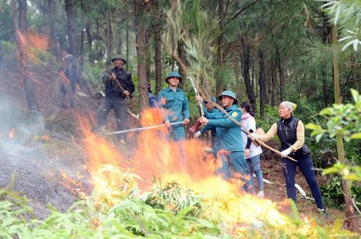 Diễn tập chống cháy rừng tại Bắc Giang