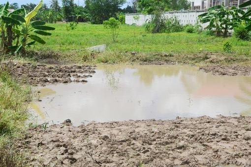 Lâm Đồng: Tắm ở hồ chứa nước tưới, 2 trẻ tử vong