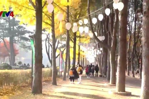 Gắn kết cộng đồng người Việt tại tỉnh Gyeongju - Hàn Quốc