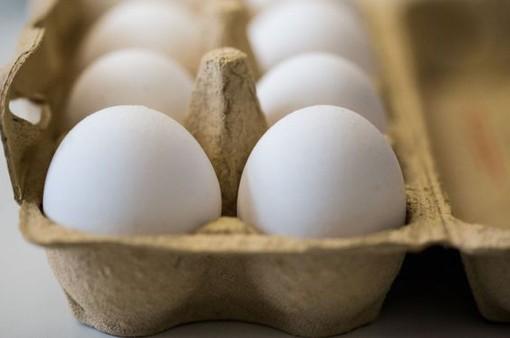 Hàn Quốc tiêu hủy toàn bộ trứng nhiễm hóa chất
