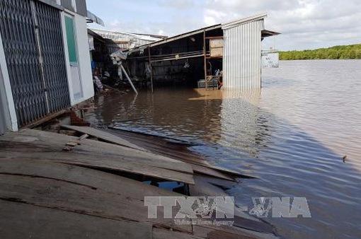 Cà Mau: Liên tiếp xảy ra sạt lở đất trong đêm