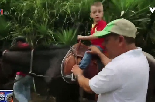 Cưỡi ngựa - Liệu pháp trị bệnh cho trẻ khuyết tật