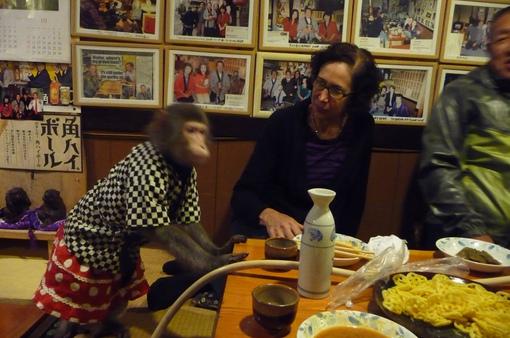 Độc đáo khỉ làm phục vụ ở nhà hàng Nhật Bản