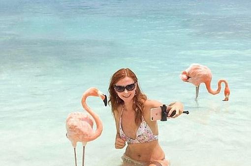 Mốt chụp ảnh với động vật trên bãi biển ở Caribe gây sốt