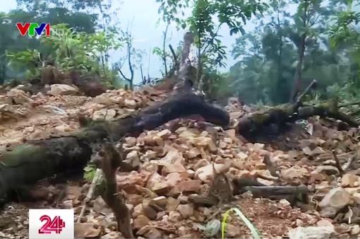Quặng tặc ngang nhiên tàn phá rừng đặc dụng ở Cao Bằng