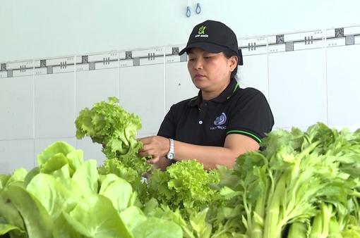 Việt Nam chưa có cơ quan cấp chứng nhận sản phẩm hữu cơ