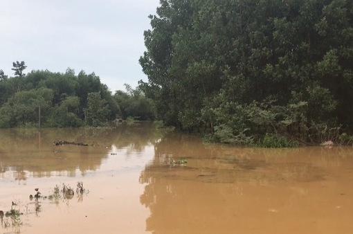 Nước sông Ngàn Sâu dâng cao, nhiều xã ở Hương Khê, Hà Tĩnh bị chia cắt