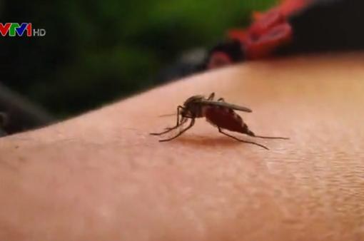 Thêm 1 bệnh nhi tử vong do sốt xuất huyết tại Hà Nội