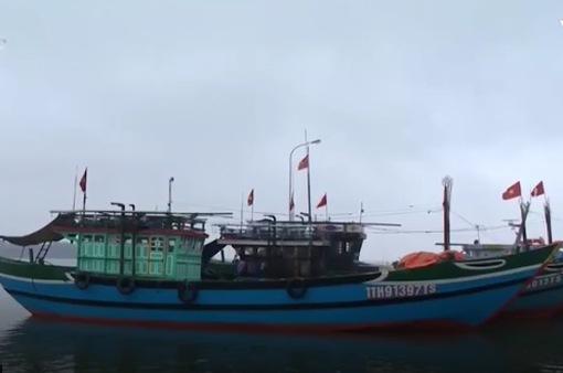 TT-Huế: Tàu vỏ thép khó tìm nơi neo đậu an toàn