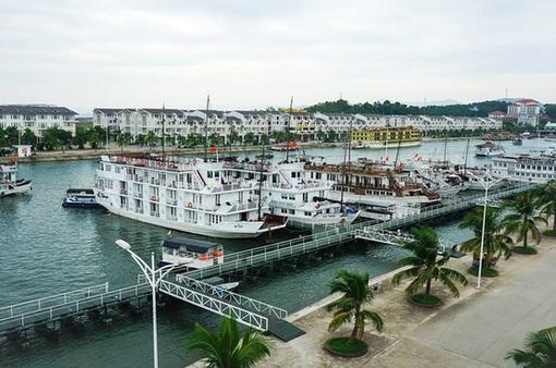 Quảng Ninh đình chỉ hoạt động 14 tàu du lịch vỏ gỗ