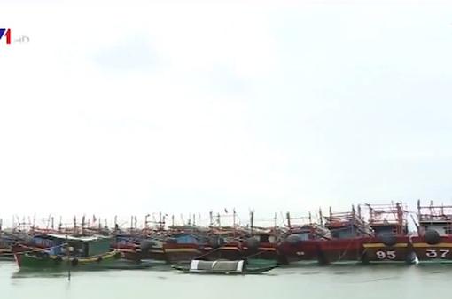 Tàu thuyền khẩn trương tránh trú bão số 4