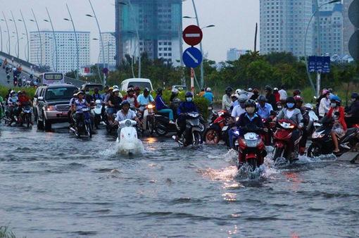 TP.HCM chủ động phòng tránh thời tiết cực đoan
