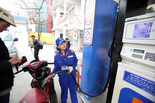 """Bộ Tài chính: """"Tăng khung thuế bảo vệ môi trường xăng dầu để bảo vệ lợi ích quốc gia"""""""