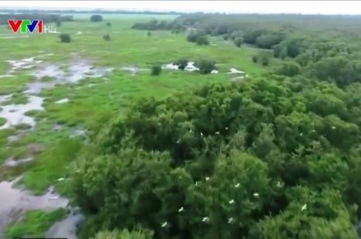 Vườn quốc gia Tràm Chim tăng cường công tác chống cháy rừng