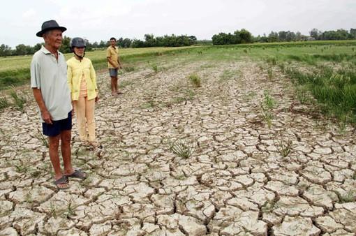 ĐBSCL - 1 trong 3 đồng bằng chịu ảnh hưởng biến đổi khí hậu nặng nề nhất trên thế giới