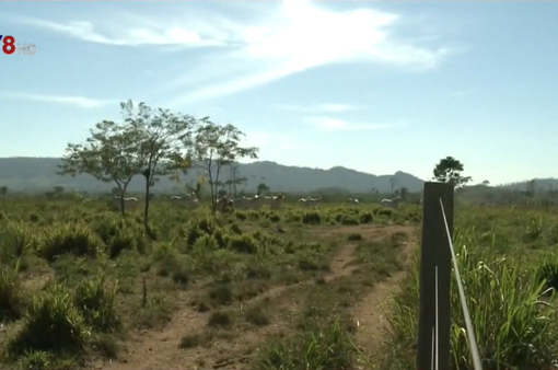 Cảnh báo rừng nhiệt đới Amazon có nguy cơ bốc cháy