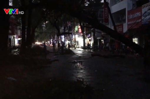 Cần Thơ: Gãy đổ cây cổ thụ, cả tuyến phố mất điện
