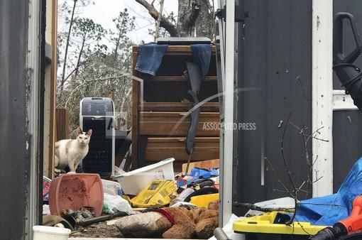70.000 người dân Mỹ vẫn đang cần trợ giúp sau bão Michael