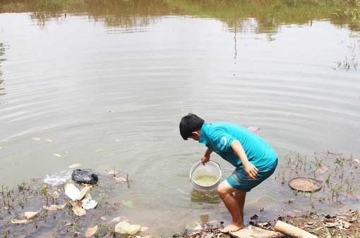 Thiếu nước sạch, người dân Long An phải dùng nước kênh rạch kém vệ sinh