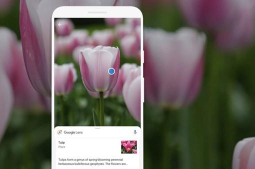 Google mang tính năng tìm kiếm thông tin qua camera lên iOS
