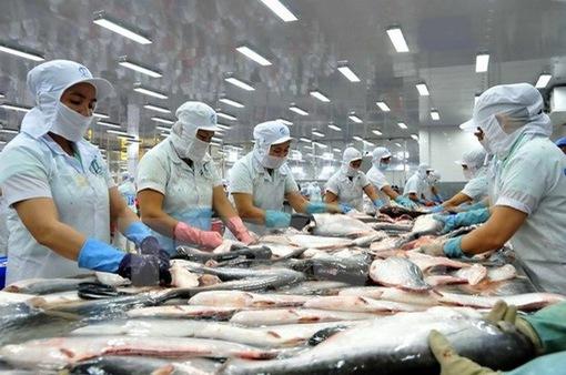 Hết tháng 11/2018, xuất khẩu cá tra cán mốc 2 tỷ USD