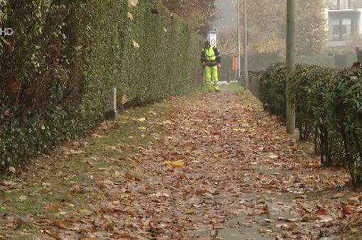 Thu gom lá rụng ở Brussels, Bỉ