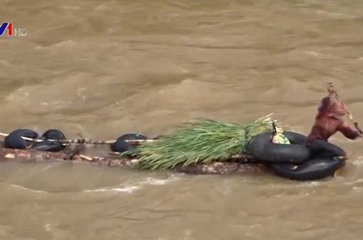 Bắt giữ 7 bè gỗ lậu trên sông Đăk Bla