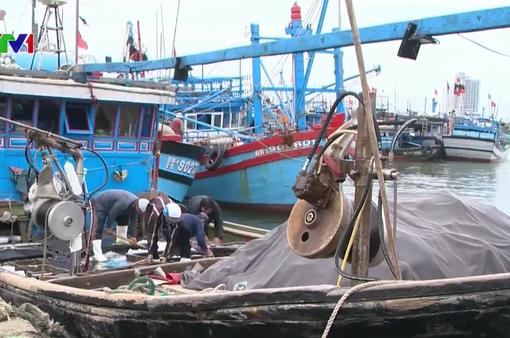 Ngư dân Đà Nẵng ra quân đánh bắt hải sản đầu năm
